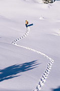Snowshoes Prints - Matt Straka Snowshoeing Trail In Fresh Print by Rich Reid