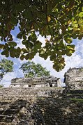 Ancient Civilizations Framed Prints - Mayan Ruins Framed Print by Jeremy Woodhouse