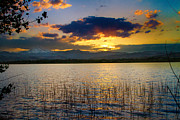 Sunset Greeting Cards Posters - McIntosh Lake Sunset Poster by James Bo Insogna