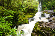 Mclean Prints - McLean Falls in the Catlins Print by Ulrich Schade