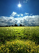 Environement Posters - Meadow Song Poster by Phil Koch