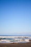 Mendocino California Coastline Print by Tammie Gilchrist