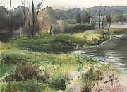 Babbling Originals - Meshoppen Creek by Harry  Kellow