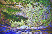 Gatlinburg Tn Prints - Mesmerized Print by Deborah