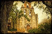 Church Originals - Mission Espada by Iris Greenwell