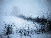 Snowscape Digital Art - Misty morning by Gun Legler
