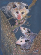 Woodland Pastels Originals - Mom Hes in my Spot by Carol Jobe