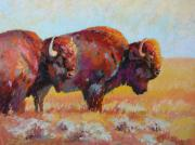 American Bison Pastels Prints - Monarchs of the Great Plains Print by Christine  Camilleri