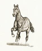 Horse Drawings Framed Prints - Monty Framed Print by Lorrie Kalena