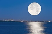 North Vancouver Framed Prints - Moonrise Over Vancouver Harbour Framed Print by David Nunuk