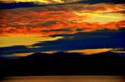 Yellowstone Digital Art Originals - Moosehead lake by Adam Shevron