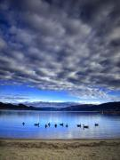 Morning Light On Okanagan Lake Print by Tara Turner