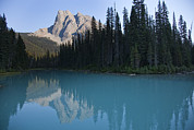 Canadian Rockies Photos - Mount Burgess Reflects In An Alpine by Taylor S. Kennedy