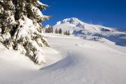 Snow-covered Landscape Photo Prints - Mount Hood, Oregon, United States Of Print by Craig Tuttle