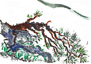 Buddhist Paintings - Mountain Pine by Ellen Miffitt