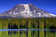 Huckleberry Photos - Mt Adams and Takhlakh Lake by Steve Warnstaff