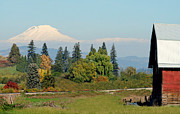 Old Barn Pen And Ink Photo Posters - Mt. Adams In The Country Poster by Athena Mckinzie