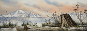 Landscape Greeting Card Painting Originals - Mt. Baker Cascade Coast by James Williamson