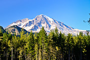 National Park Photography Prints - Mt Rainier Print by Greg Norrell
