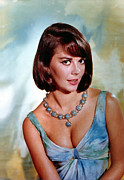 Empire Waist Posters - Natalie Wood Poster by Everett