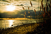 Golden Sky Prints - New Beginnings Print by Jason Naudi Photography