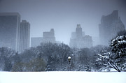 Rosemary Hawkins Prints - New York Blizzard in Central Park Print by Rosemary Hawkins