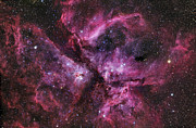 Starfield Posters - Ngc 3372, The Eta Carinae Nebula Poster by Robert Gendler
