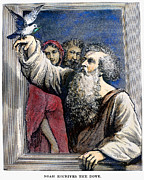 Noah Prints - Noah Receives The Dove Print by Granger