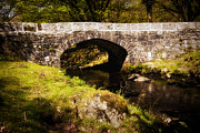 Moss Green Framed Prints - Norsworthy Bridge Framed Print by Jay Lethbridge