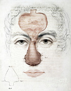 Manual Prints - Nose Reconstruction, 1815 Medical Text Print by Science Source