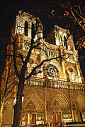 Nighttime Framed Prints - Notre Dame de Paris Framed Print by Elena Elisseeva