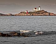 Nubble Light Framed Prints - Nubble Light Framed Print by James Dricker