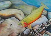 Cutthroat Trout Originals - Nymphing by Scott Manning