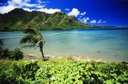 Green Bay Framed Prints - Oahu Kahana Bay Framed Print by Peter French - Printscapes