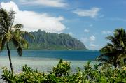 Green Bay Framed Prints - Oahu, Kaneohe Bay Framed Print by Vince Cavataio - Printscapes