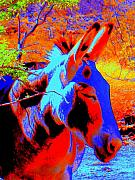 Donkey Digital Art Metal Prints - Oatman Burro Metal Print by Lessandra Grimley