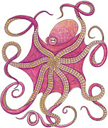 Octopus Drawings - Octopus by Carol Lynne