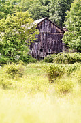 Lush Green Framed Prints - Old Barn Framed Print by HD Connelly