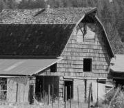 Black And White Pyrography Posters - Old Barns Poster by Laurie Kidd