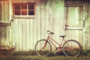 Bicycle Basket Prints - Old bicycle leaning against grungy barn Print by Sandra Cunningham