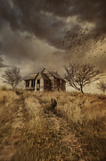 Sandra Cunningham - Old derelict farm house on the Prairies
