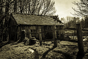 Shed Photo Prints - Old Fashioned Shed Print by Dawn OConnor
