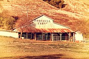 Old Farms Posters - Old Foothill Farms in Small Town of Sunol California . 7D10796 Poster by Wingsdomain Art and Photography