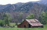 Padres Framed Prints - Old Red Barn, Green Meadow, Mountains Framed Print by Rich Reid