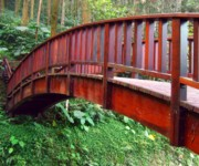 Old Bridge Photos - Old Wooden Bridge by Yali Shi