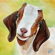 Goat Paintings - Opal by Laura Carey