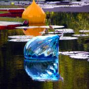 Lily Pond Originals - Orange and Blue Reflections by John Lautermilch