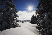 Snow-covered Landscape Photo Prints - Oregon Cascades, Oregon, United States Print by Craig Tuttle