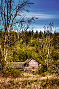 Outbuilding Framed Prints - Orting Barn Framed Print by David Patterson