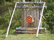 Bulls Eye Framed Prints - Outdoor Wooden Bulls-eye Framed Print by Jaak Nilson